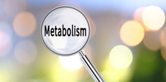 Secrets for Best Metabolism Now Revealed!