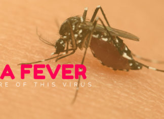 zika-fever-beware-of-this-virus