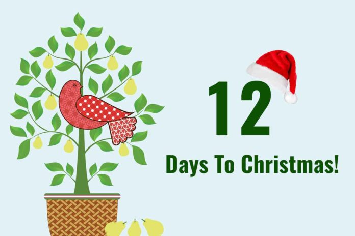 Christmas Countdown - 12 Days To Go!