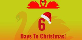 Seven Swans A-Swimming - 6 Days To Christmas!