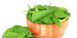 Hidden Benefits of Curry Leaves With Bonus DIY Recipes!