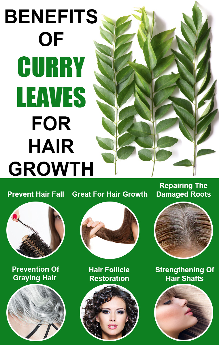 BENEFITS OF CURRY LEAVES FOR HAIR GROWTH